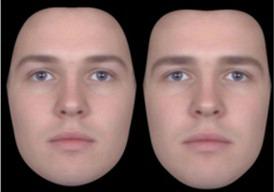 Aynı yüzün feminen(sol) ve maskülen(sağ) görünümleri