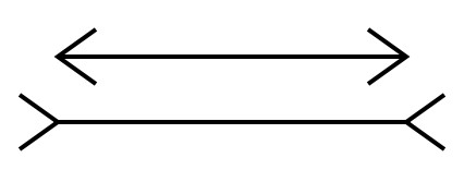 illusion - horizontal lines