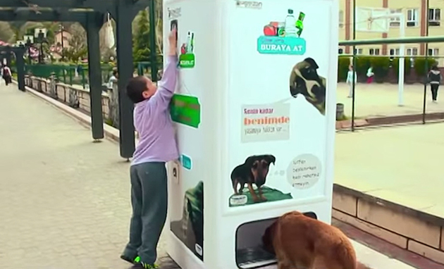Pugedon vending machine