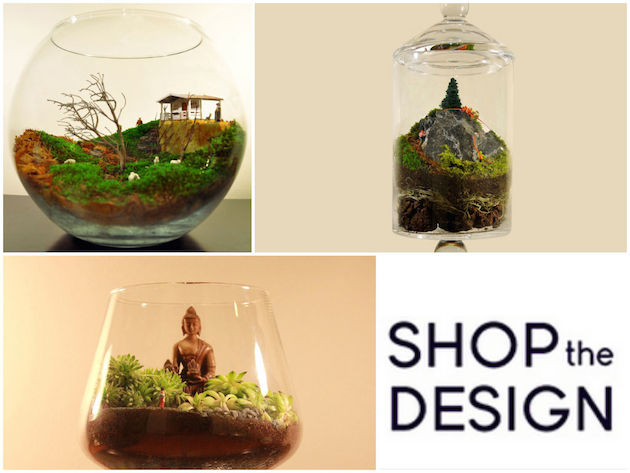 shop the design
