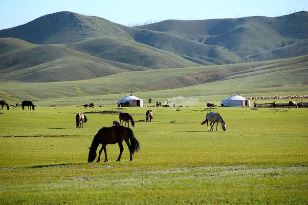 North Mongolia.