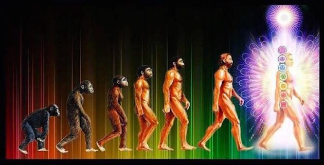evrim 2