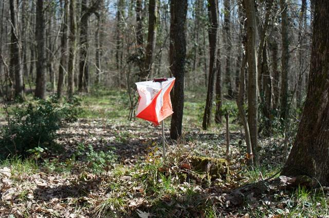 istanbul orienteering spring cup