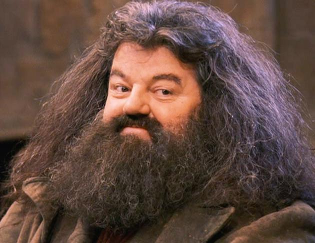 sakallı hagrid