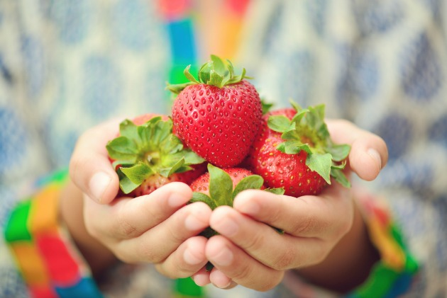 Paleo diyetinde örnek besinler ve dikkat edilmesi gerekenler