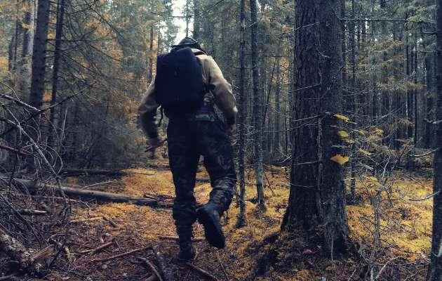 Doğa yürüyüşleri beynimizi nasıl etkiliyor ?