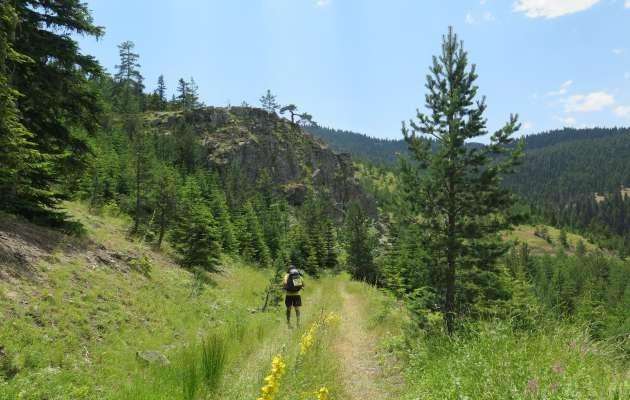 Doğayla iç içe bir oryantiring macerası: DASK ADAM