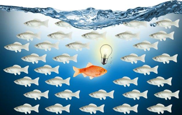 Liderlik sorunsalı: İyi bir liderin özellikleri nelerdir?
