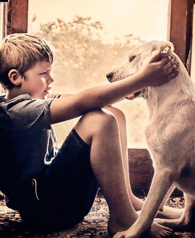 Köpekle dostluk yaşayan çocuğun harika fotoğrafları