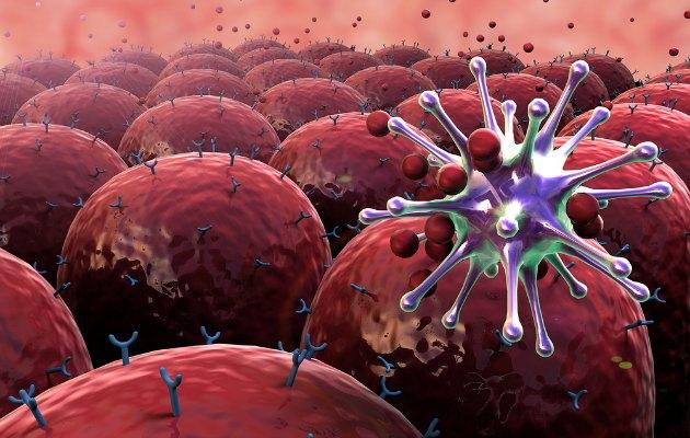 Bağışıklık sistemini güçlendirmede dikkat edilmesi gereken noktalar