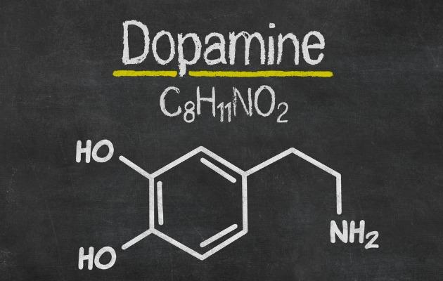 Şeker beyinde aşırı miktarda dopamin salgılanmasına sebep oluyor