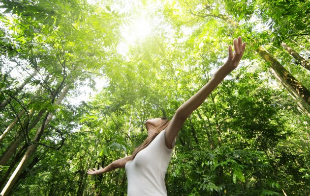Yeşil alanların insan sağlığına psikolojik ve fizyolojik etkileri