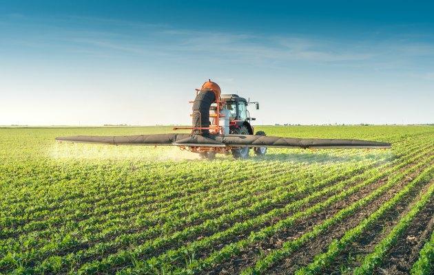 lim değişikliği küresel gıda sistemini tehlikeye atıyor.standart