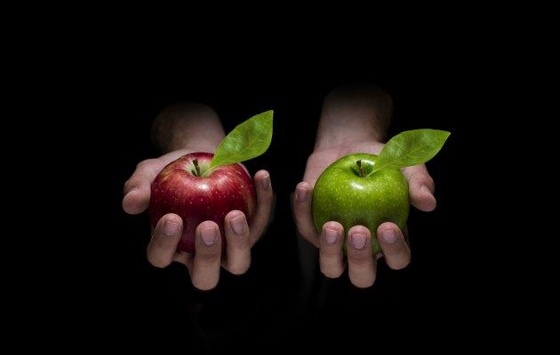 elma kıyaslama